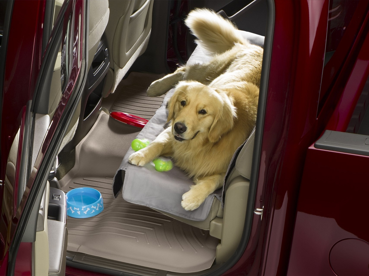 Ford F150 Rear Seat Pet Cover