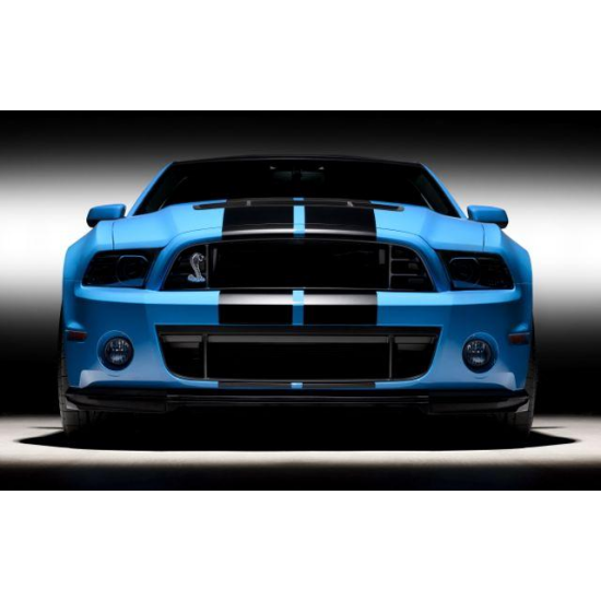 2010-2013 Shelby GT500 Ford 2013 GT500 Lower Grille