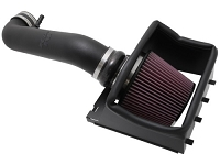 2009-2010 Ford F150 4.6L V8 K&N Cold Air Intake (3V Only)