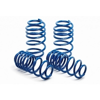 2010 Mustang GT / V6, 2007-2014 GT500 Coupe H&R Super Sport Lowering Springs