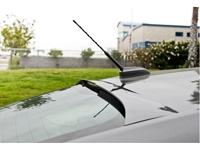 2013-2016 Fusion Street Scene Rear Window Spoiler
