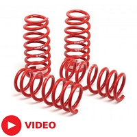 2011-2014 Mustang GT / V6 H&R Race Springs