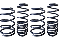 1979-2004 Mustang GT Steeda Competition Springs - V8