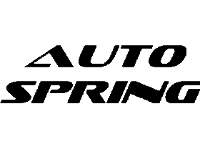 20% Off Auto Spring!