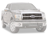 2011-2012 F150 Carriage Works Billet Grille - Platinum Edition Only