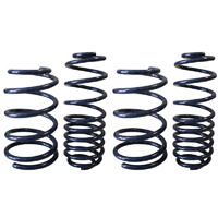 99-04 Mustang Lowering Springs
