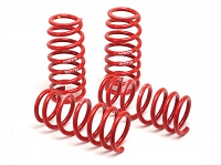 07-14 GT500 H&R Lowering Coil Springs