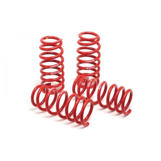 1979-2004 Mustang GT / V6 Coupe H&R Race Lowering Springs