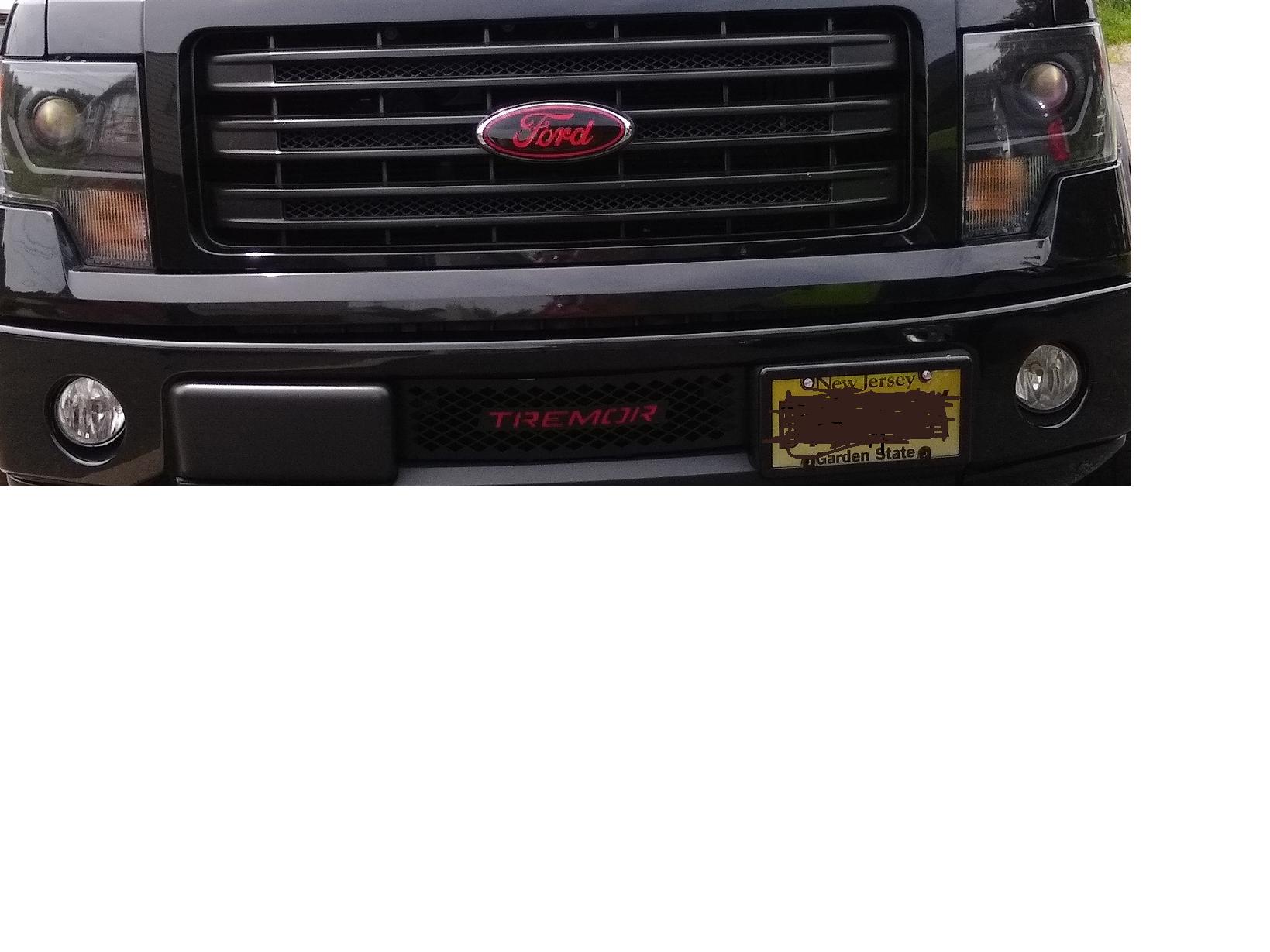 FORD MUSTANG 2010-2014 3.7L PERFORMANCE Hood VINYL DECALS Emblem FITS
