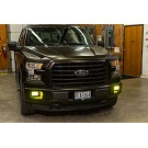 1999-2020 F150 Diode Dynamics LED Fog Lights (Set of 2) 12