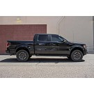 2009-2013 F150 4WD Rancho quickLIFT Loaded Leveling Kit - Driver Side 11